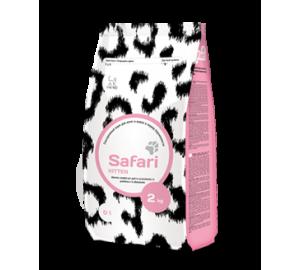 Safari for Kitten