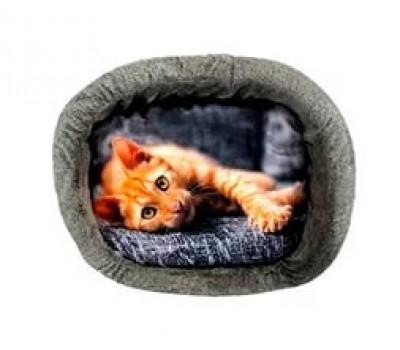 """Лежанка """"Рыжий кот"""" (фотопечать)"""